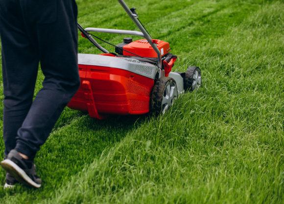 ¿Qué maquinas o herramientas necesita mi jardín?