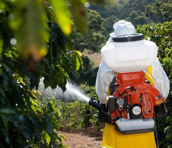 Pulverizadoras Husqvarna: protege de tus plantas de plagas