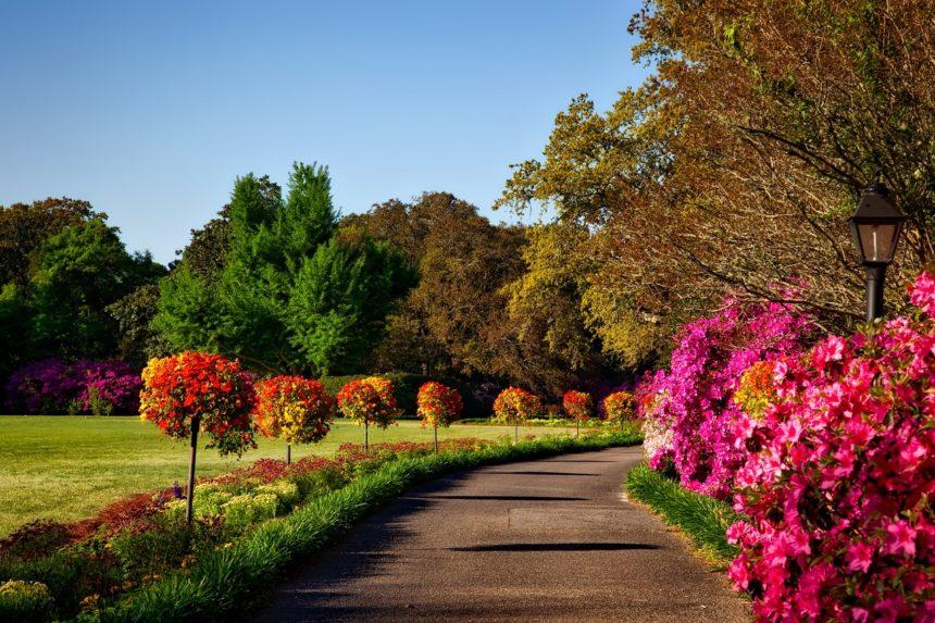 Beneficios de tener un jardín en casa (II)