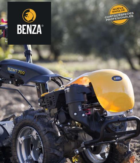 Cinco características de Benza