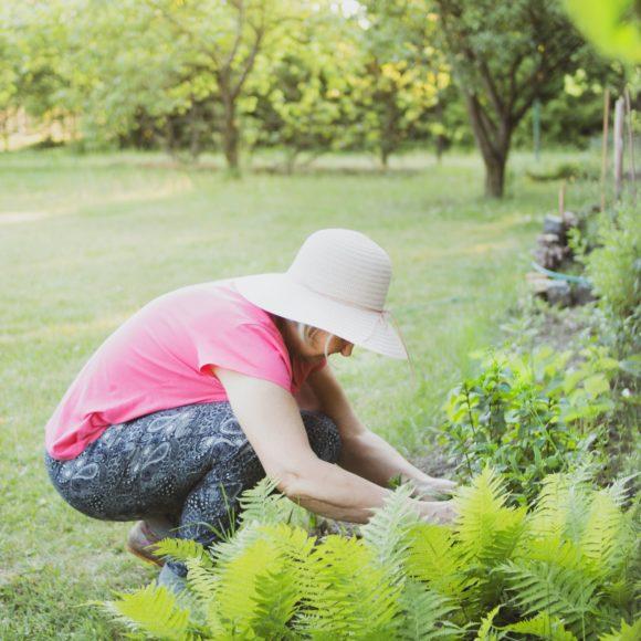 ¿Por qué la Jardinería puede ser tu mejor amiga?
