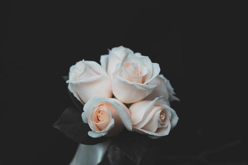 Las flores populares en funerales
